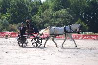 Photo n° 45557 Rosières aux Salines photo Anne Sophie Azzos-IFCE  Affichée 3 fois Ajoutée le 11/08/2018 16:09:51 par JeanClaudeGrognet  --> Cliquer pour agrandir <--