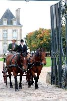 Photo n° 49213 La tradition au PIN-AU-HARAS 2019 Photo N. TOUDIC Bertrand MARECHAUX. Voiture Wagonnette attelée à 2 Cobs normands Affichée 10 fois, 1 vote Ajoutée le 16/10/2019 13:50:11 par Nadinetoudic